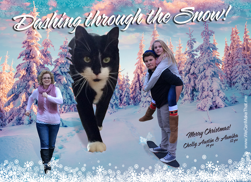 Abominable Snow cat Christmas card idea