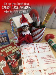 Elf on the Shelf idea Candy cane Garden