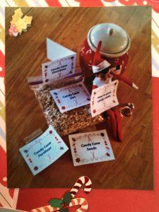 Elf on the Shelf idea - Candy cane Garden