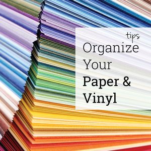 Paper and Vinyl organization
